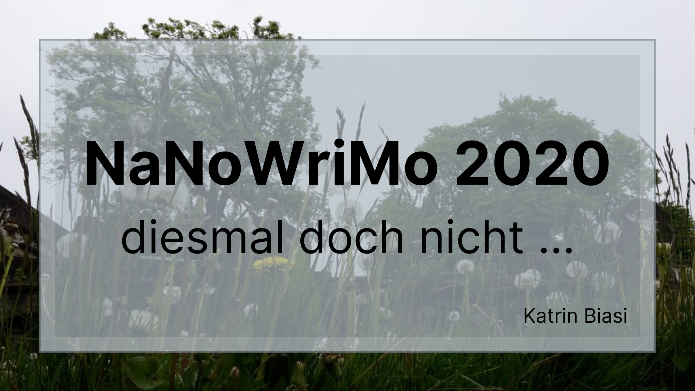 Beitragsbild zum Blogartikel NaNoWriMo 2020 von Katrin Biasi